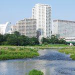 世田谷区で当日対応OKのトリミング/ペットサロン【2選】2020年更新