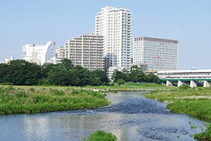 川崎市でマイクロチップを装着できる評判の動物病院【2選】