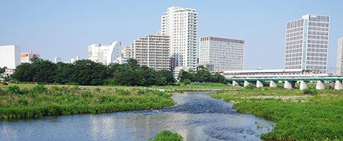 川崎市でマイクロチップを装着できる評判の動物病院【3選】