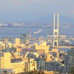 大阪市でエステメニューが豊富なトリミングサロン