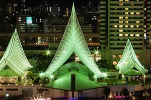 神戸市でおすすめ!予防接種が受けられる動物病院4選