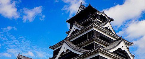 筑紫野市でトリミングサロンを探すならココ!【3選】