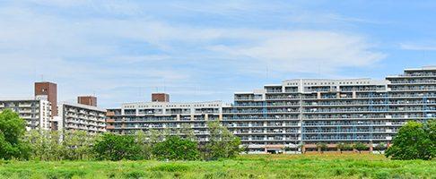 川口市で人気のトリミングサロン10選!