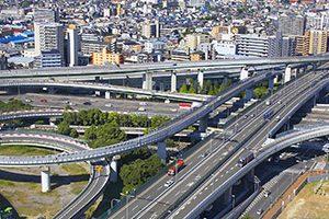 東大阪市でトリミング!送迎サービス利用可【3選】