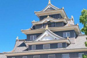 岡山市南区でトリミングをするならココ!【2選】