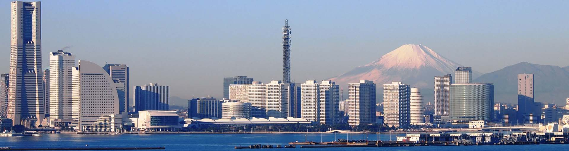 横浜市で往診ができる動物病院9選|口コミ掲載