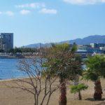 ペットホテルも利用可能!泉佐野市の便利なトリミングサロン5選