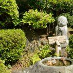 札幌市豊平区近辺でトリミングサロンを探すなら!おすすめ【4選】