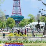 札幌市中央区でトリミングサロンを探すなら!おすすめ【5選】
