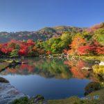 京都市右京区でトリミングサロンを探すなら!おすすめ【3選】