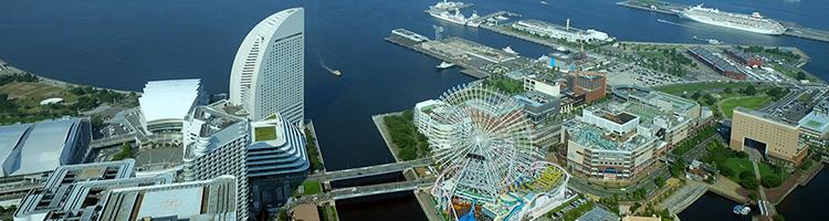 神奈川区でトリミング!横浜のおすすめサロン【2選】