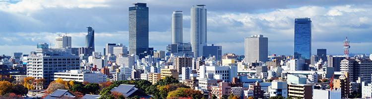 名古屋市でトリミング!編集部おすすめ