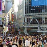 渋谷区でペットホテル併設のトリミングサロン2選