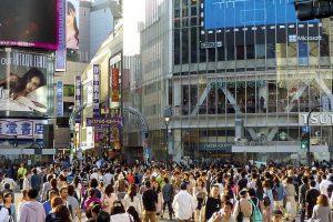 渋谷区でペットホテル併設のトリミングサロン3選