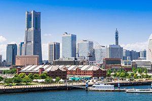 横浜市で人気!ペットホテル付きトリミングサロン7選