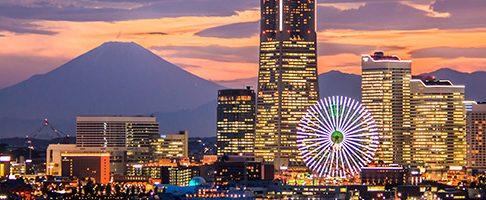 横浜市港南区でクレジットカードが使える評判の動物病院3選