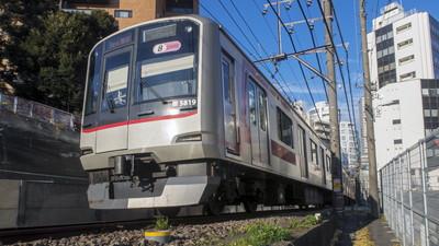広尾駅でトリミング!おすすめ【10選】