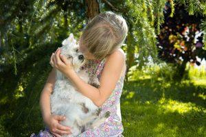 犬の抱っこの仕方。犬がされて嬉しい抱っこをしよう