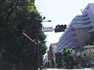 もみじ動物病院|茨木市|高槻市|日曜祝日診療