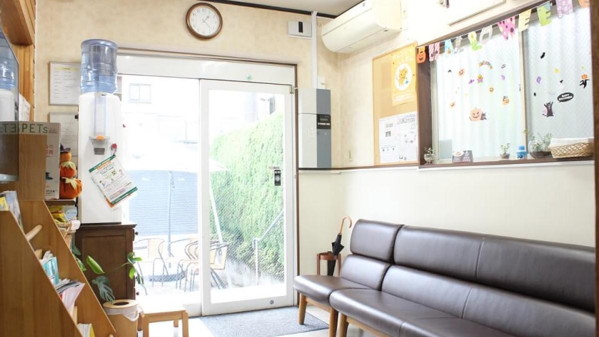 めじろ台どうぶつ病院診察室写真