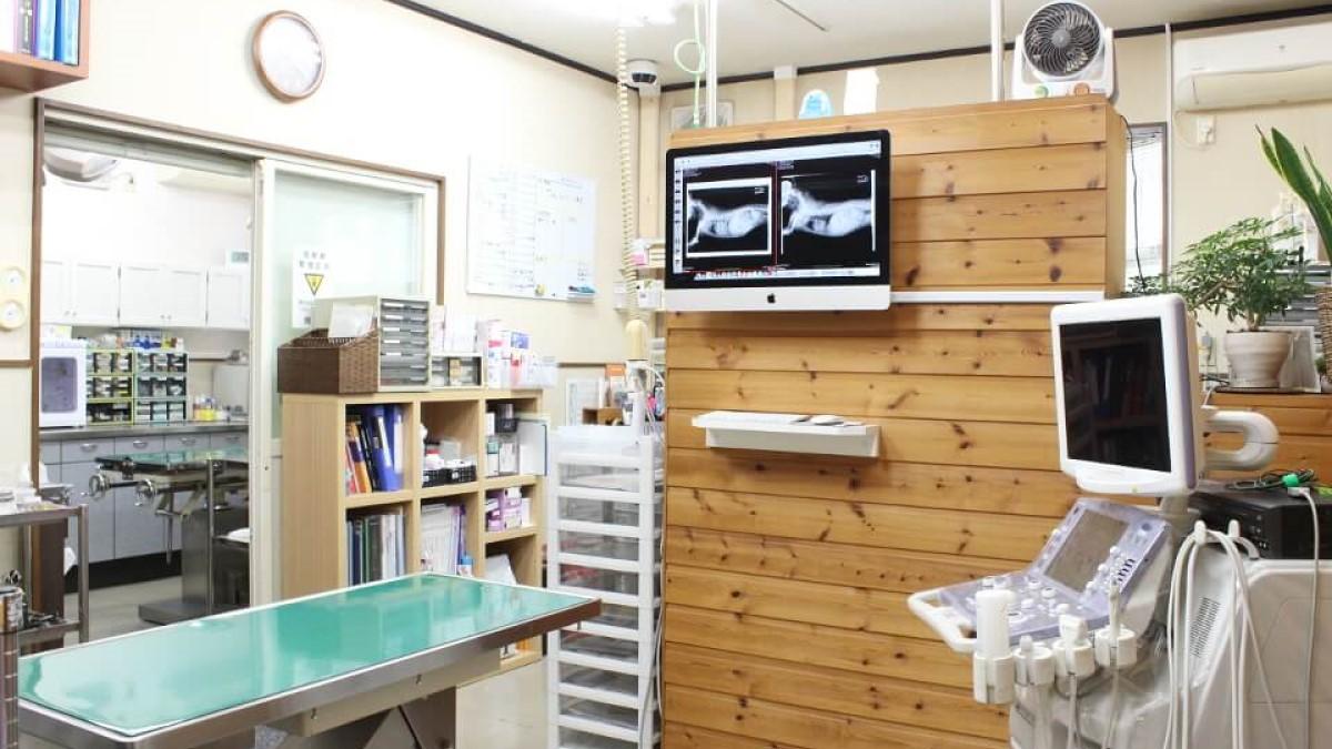 めじろ台どうぶつ病院待合室写真