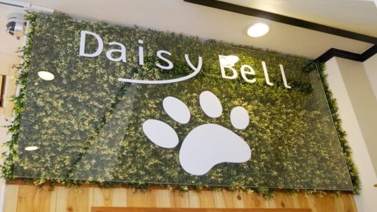 ドッグサロン&ホテル Daisy Bell
