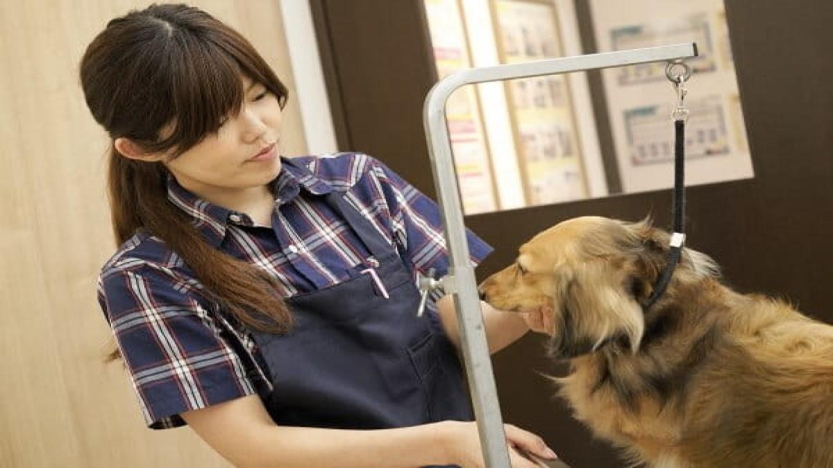 PETEMOBeautySalon 水戸内原店