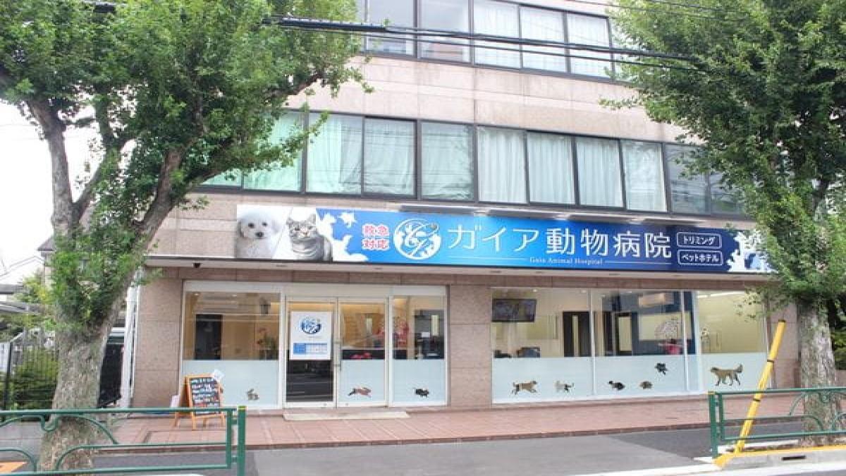 ガイア動物病院(ホテル)