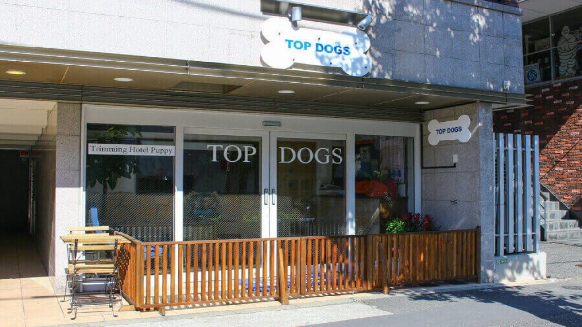 トリミング&ペットホテルTOPDOGS(トップドッグス)本店