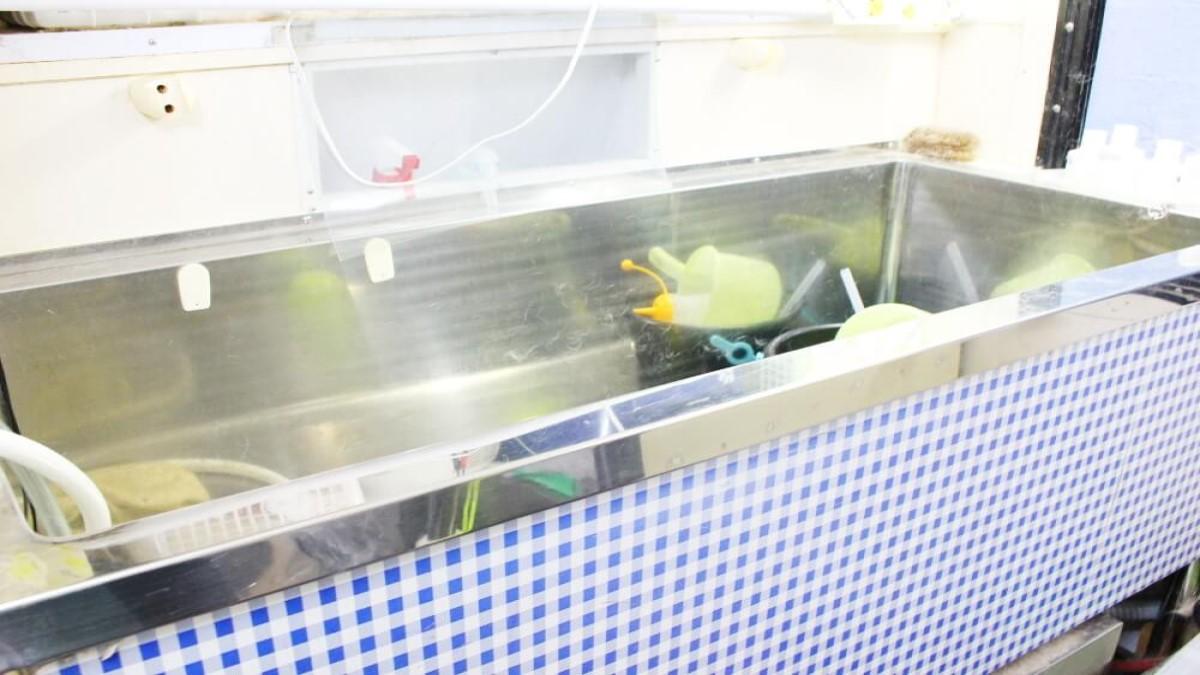 移動ペットサロン ワンダフル(出張専門)