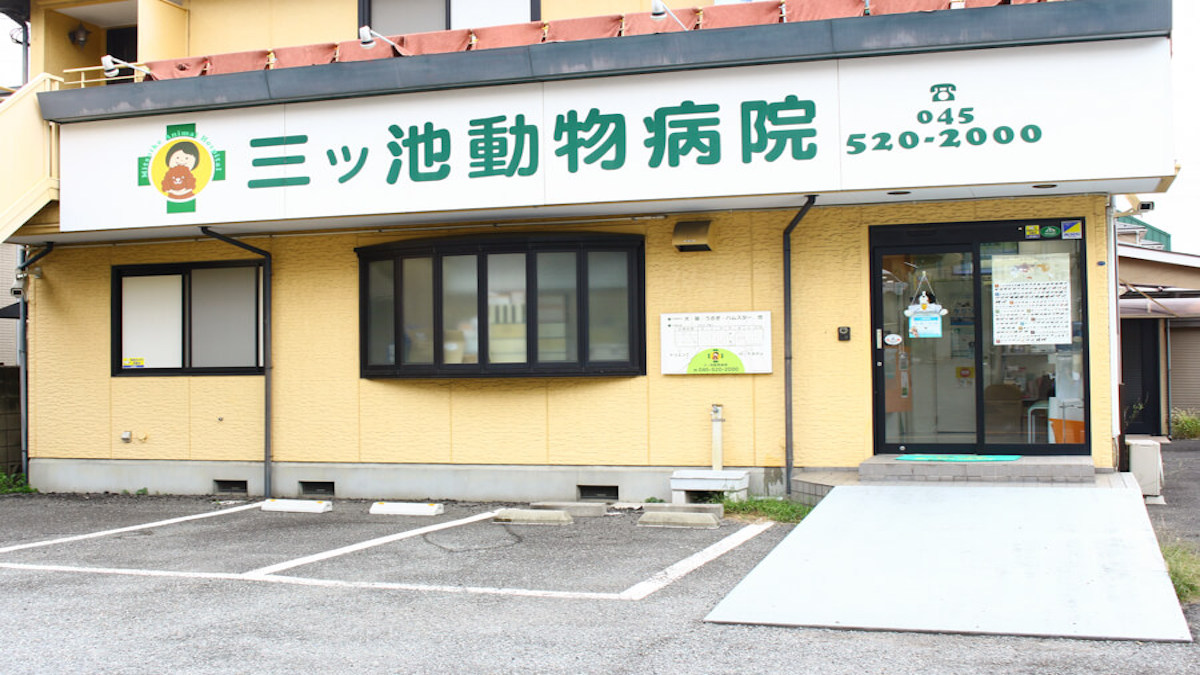 三ッ池動物病院(トリミング)