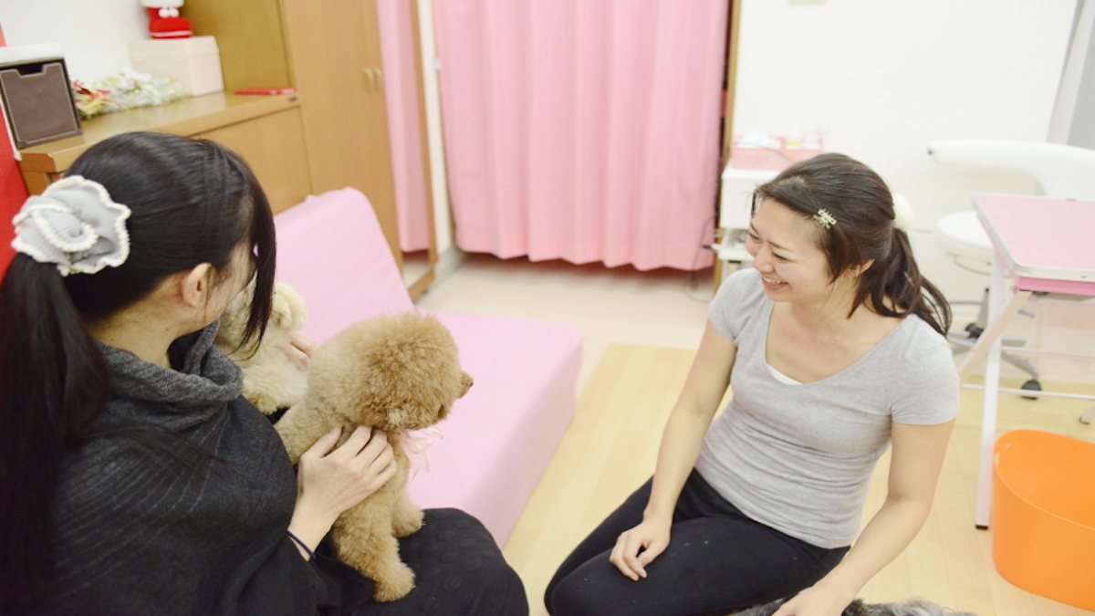 Dog Salon SAKURA