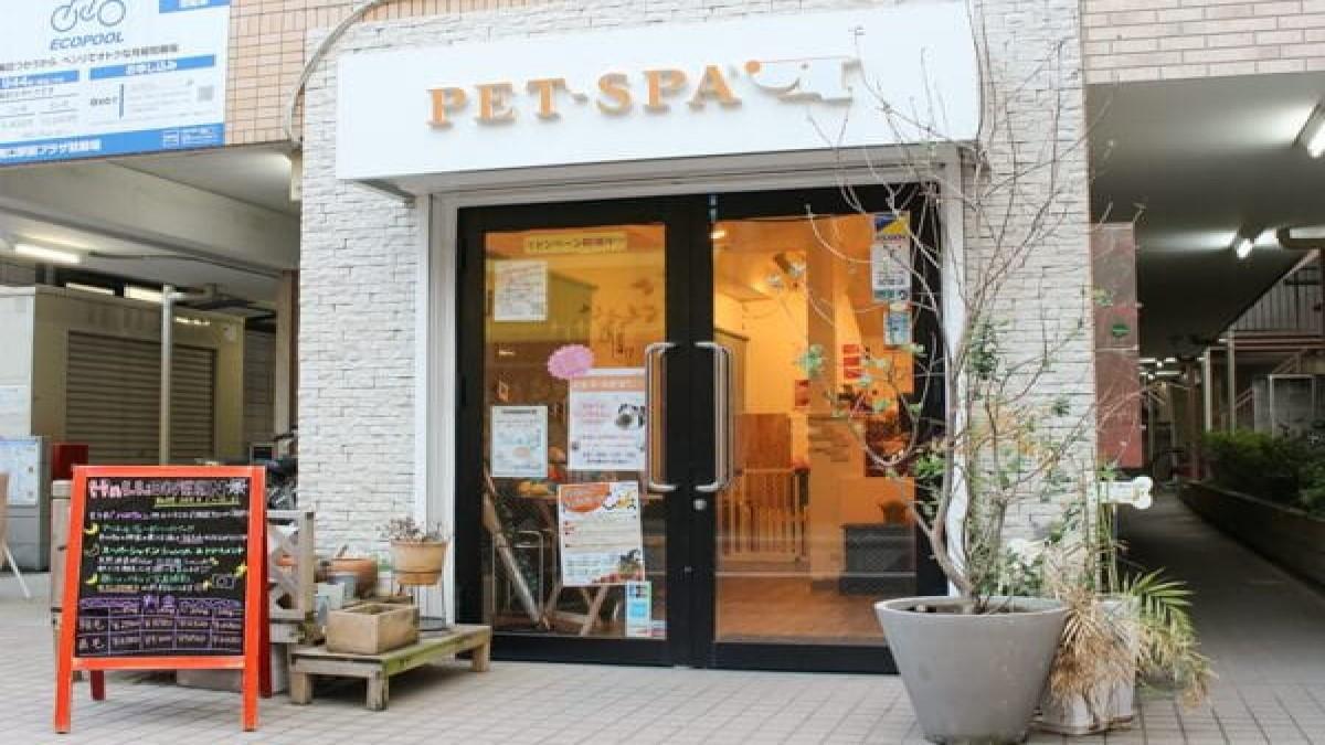 PET-SPA 日進店