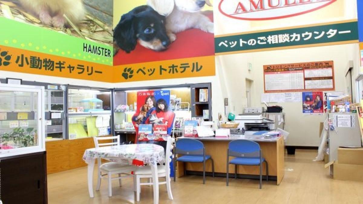 Amulet 神栖店