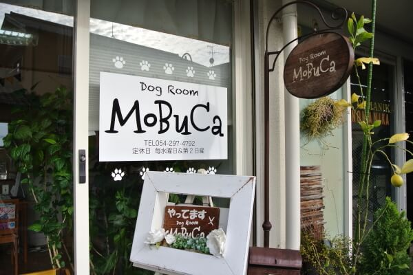Dog Room MoBuCa