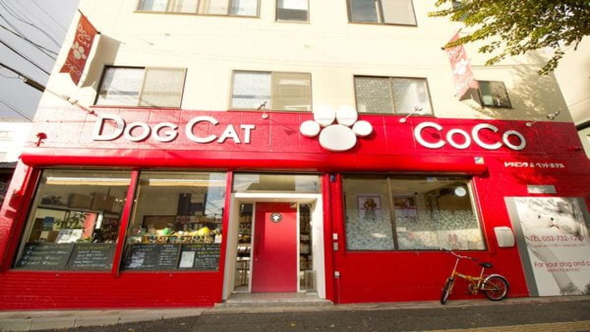 DOG CAT COCO