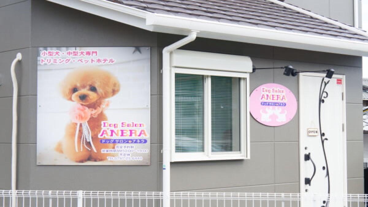 Dog Salon ANERA