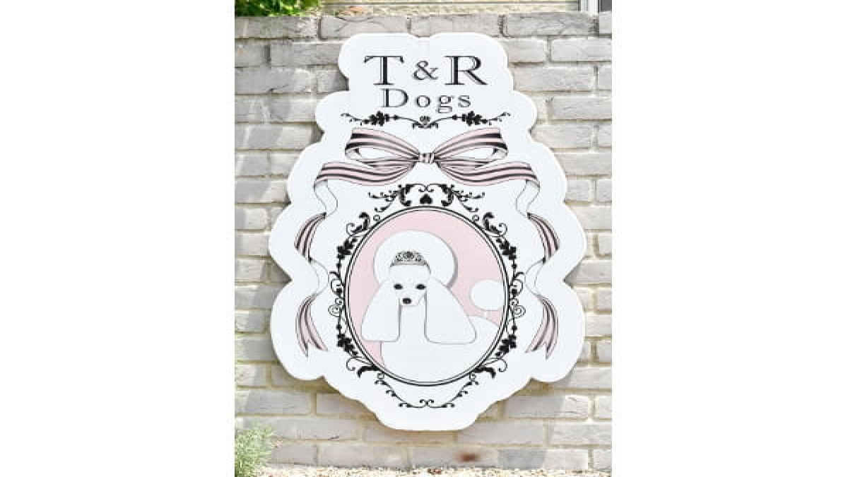 T&R Dogs