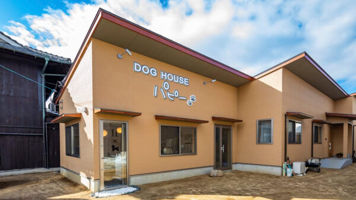 DOG HOUSE パピー