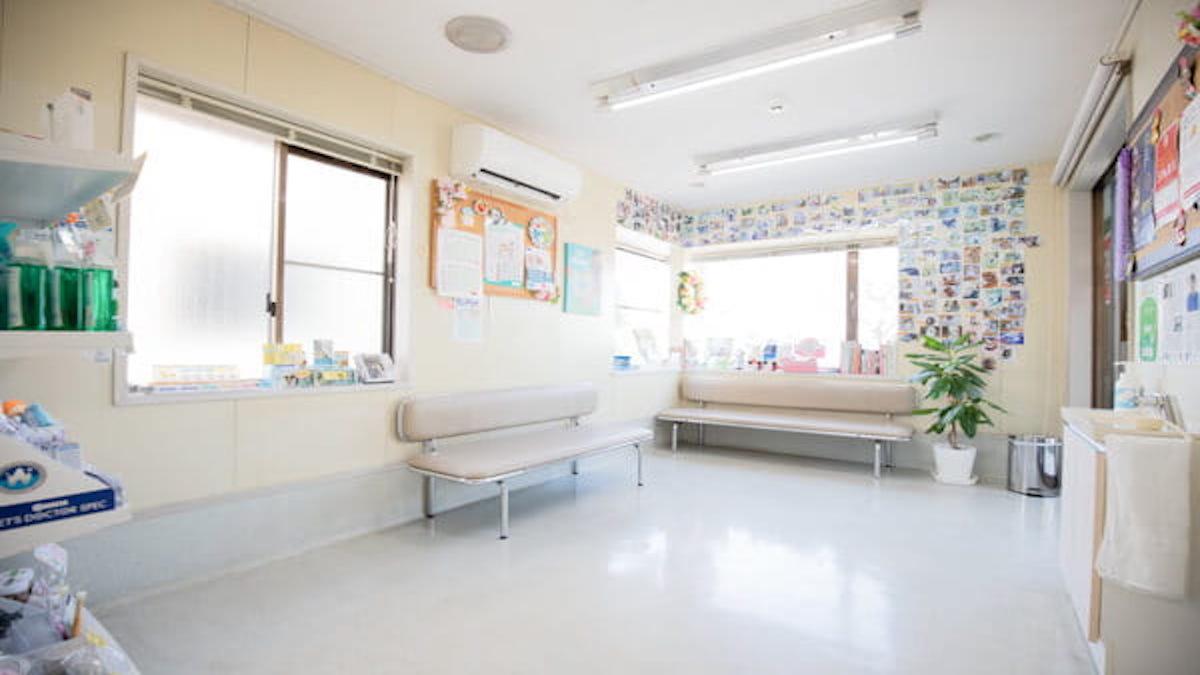 美浜区レイ動物病院(サロン)