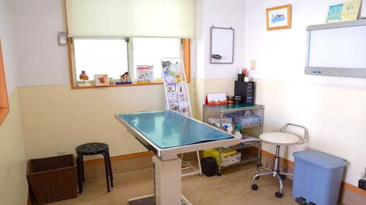 あきるの動物病院(トリミング)