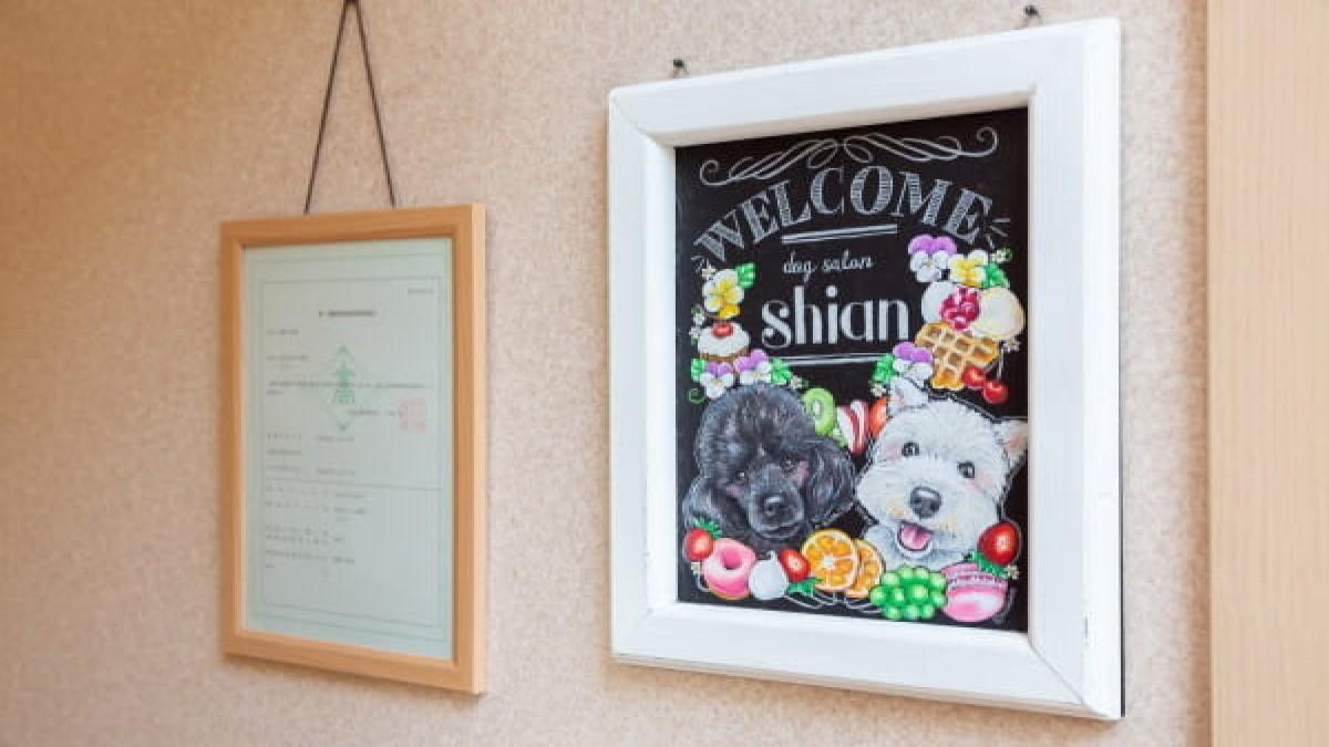 dog salon shian