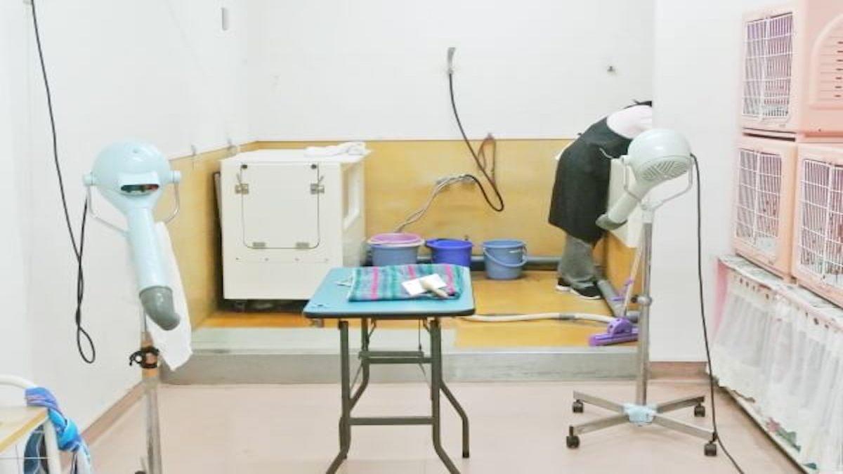 本間獣医科医院カーマ岩倉病院