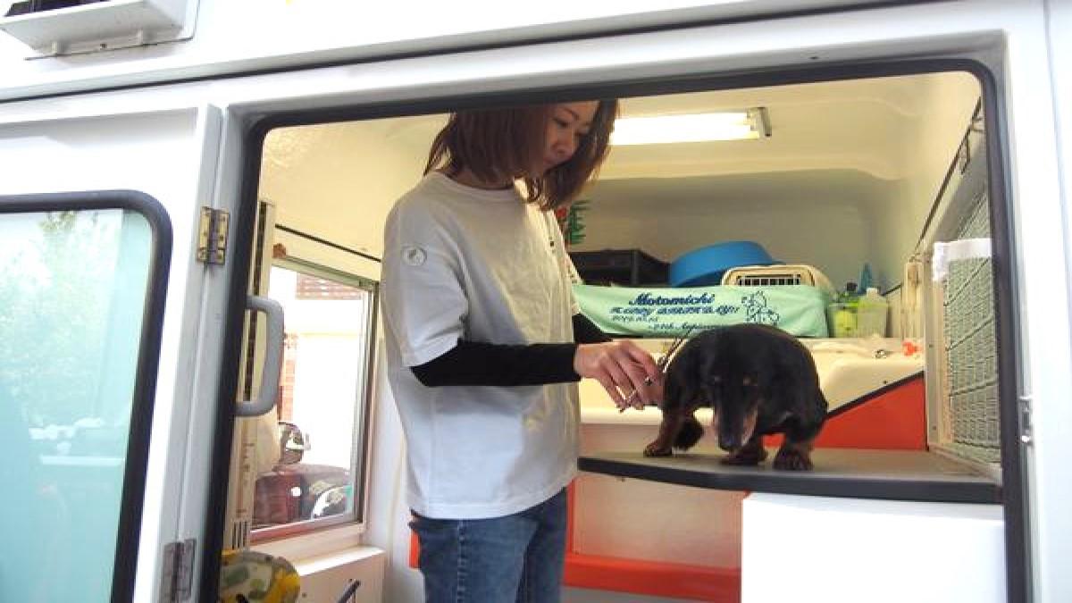犬の美容室 Nico.Nico