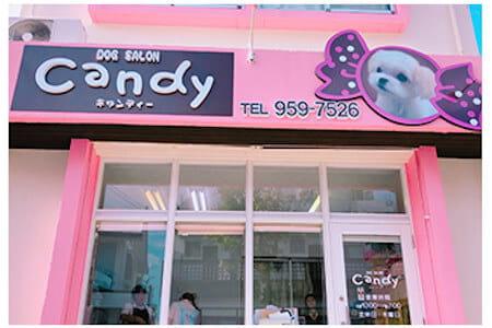 Dogsalon Candy