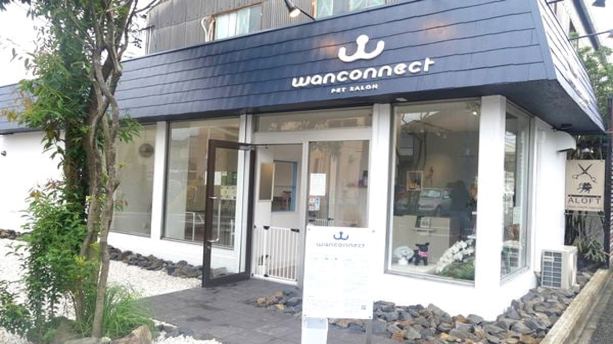 PETSALON Wan connect