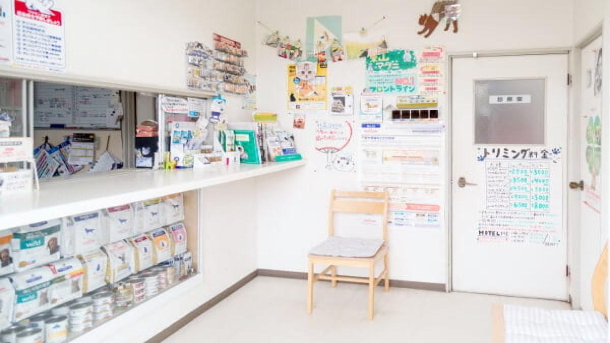 東山動物病院(トリミング)