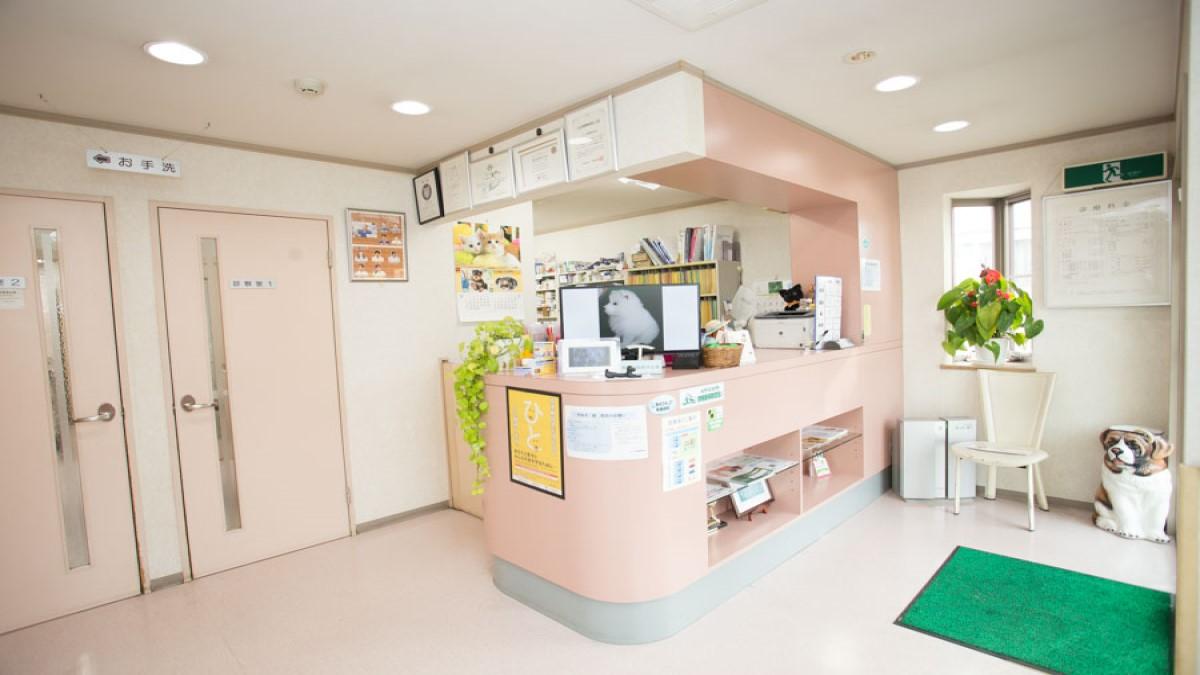 ムカイ動物病院(トリミング)