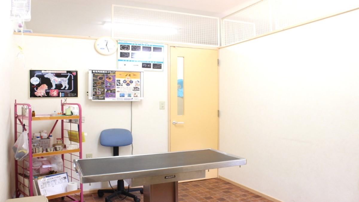 富津動物病院(トリミングハウス サリュー)