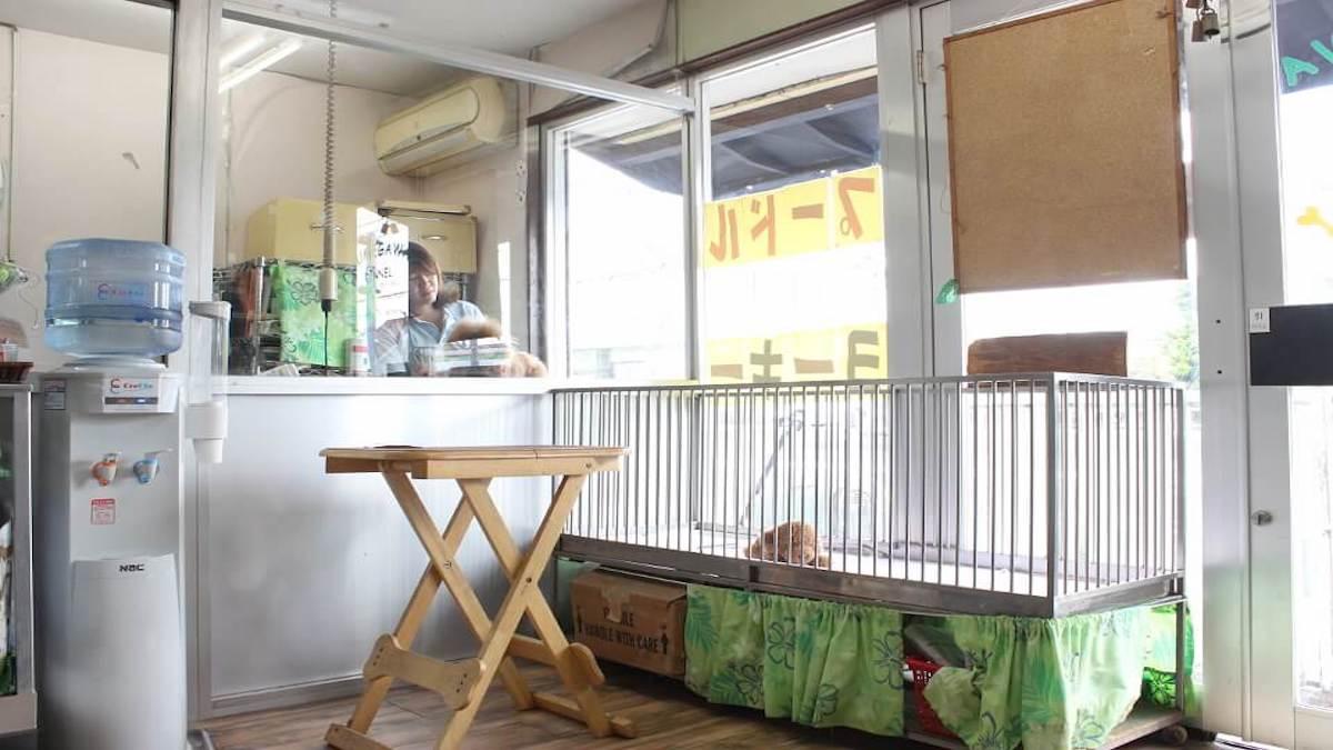 久米川ケンネル 武蔵村山支店